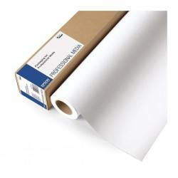 Rouleau papier photo brillant EPSON 250 g/m² - 0,406 x 30 m